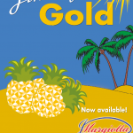 Jimmys Gold Pinapple Logo
