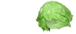 Iceberg_Slide1_Cycle3_940x430-300x137