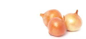 Onions-Slider-300x137